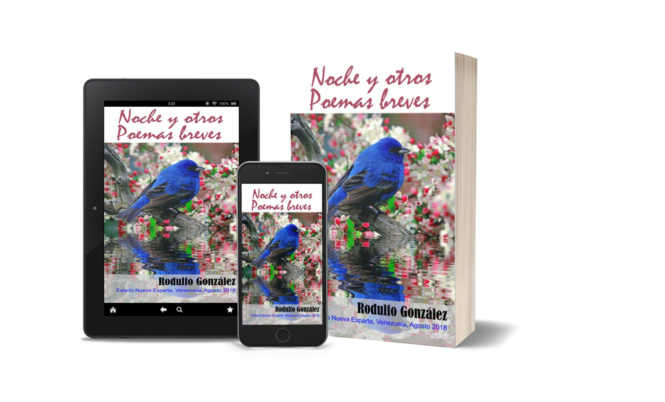 Noche y otros Poemas Breves de Rodulfo Gonzalez