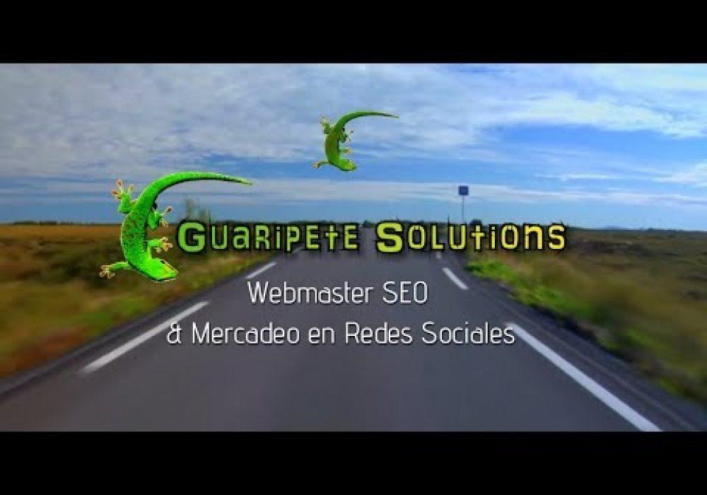 Guaripete Solutions Agencia de Internet Marketing en Charlotte
