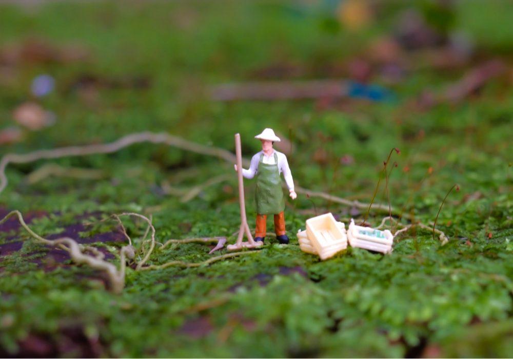 Chainlink to Provide Data for Farming Insurance Startup Arbol