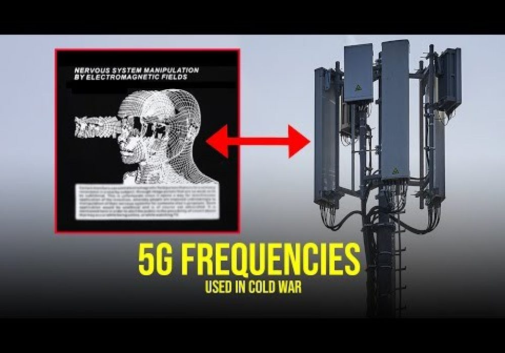 "DOCTORS WARNING! """"No Reason to Believe 5G Is Safe"""