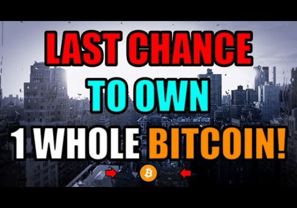 Only .27% Of The Global Population Can Own 1 Whole Bitcoin Each. 2020 Is Your Last Chance!