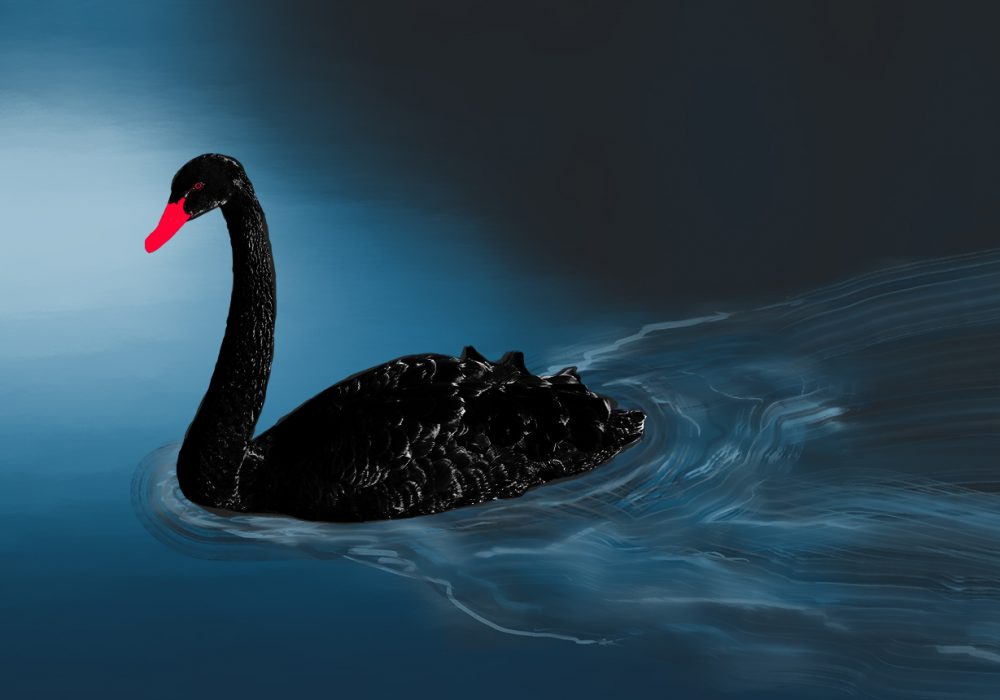 Is the COVID-19 Outbreak a Black Swan or the New Normal?